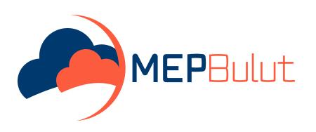 MEP Bulut